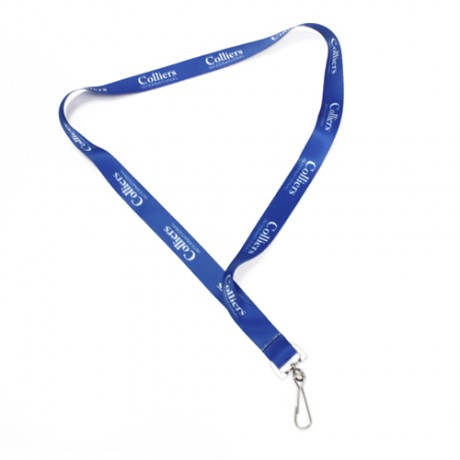 Lanyard*, lanyard, events, express delivery